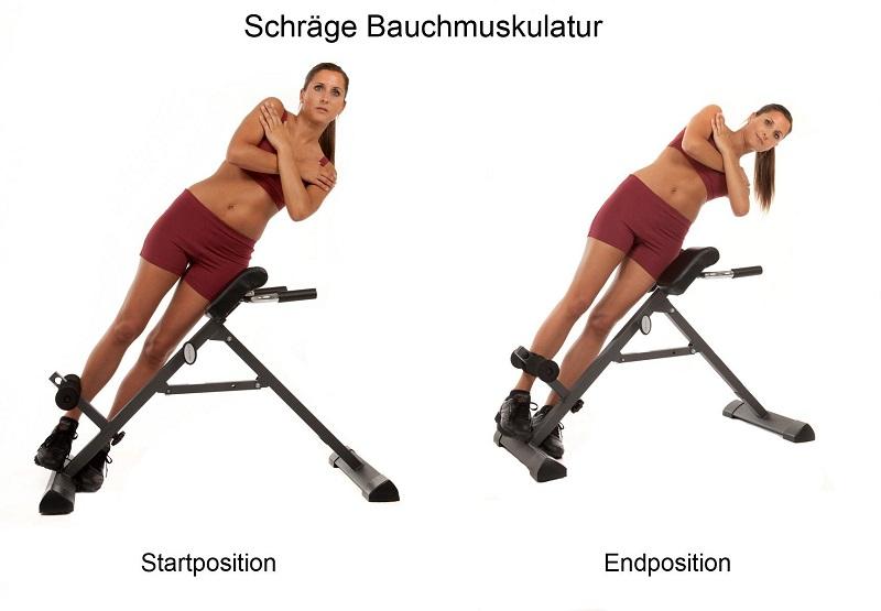 Training der seitlichen Bauchmuskulatur auf dem Bauch- und Rückentrainer